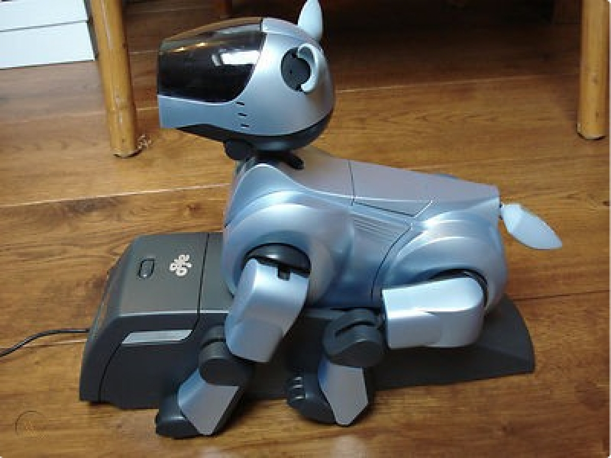 Aibo ERS-210 DHS - Droopy Head Syndrome